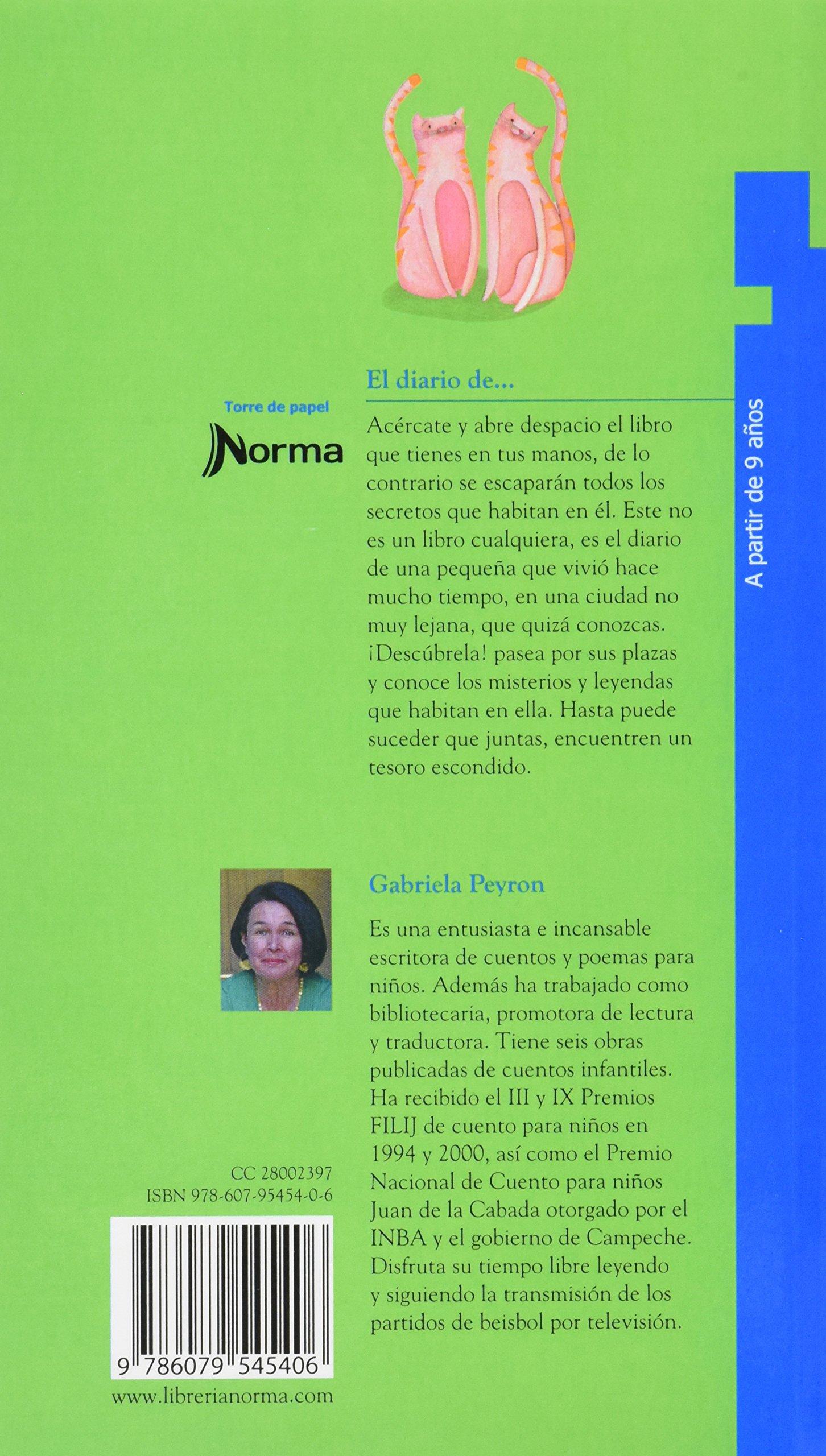 Resumen Del Libro El Secreto De Gabriela - Libros