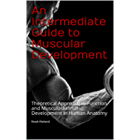 An Intermediate Guide to Muscular Development: Theoretical Approach to Function and Musculoskeletal Development in Human Anatomy