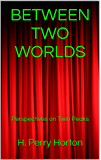 BETWEEN TWO WORLDS: Perspectives on Twin Peaks (English Edition)