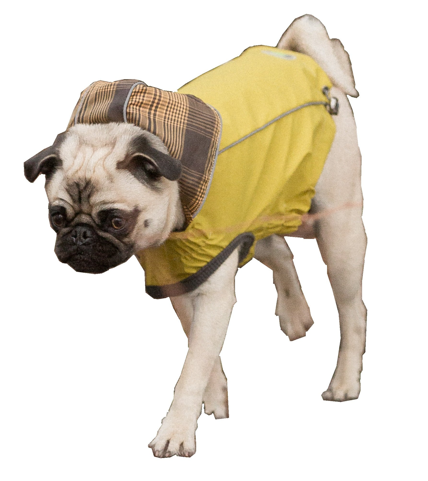 Reversible Rain Jacket for dogs (XL, Yellow) by Go Fresh Pet (Image #1)