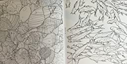 Fantastic Collections A Coloring Book Of Amazing Things Real And Imagined Steve McDonald
