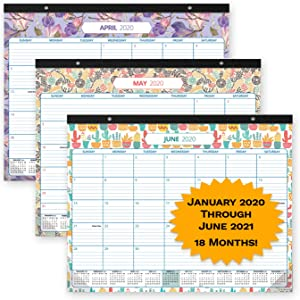"""Desk Calendar 2020-2021: Large Monthly Pages - 17""""x13"""" - Runs from Now to June 2021 - Desk/Wall Academic Year Calendar - Thick Paper, Spacious, Colorful Floral Themed Desk/Hanging Calendar"""