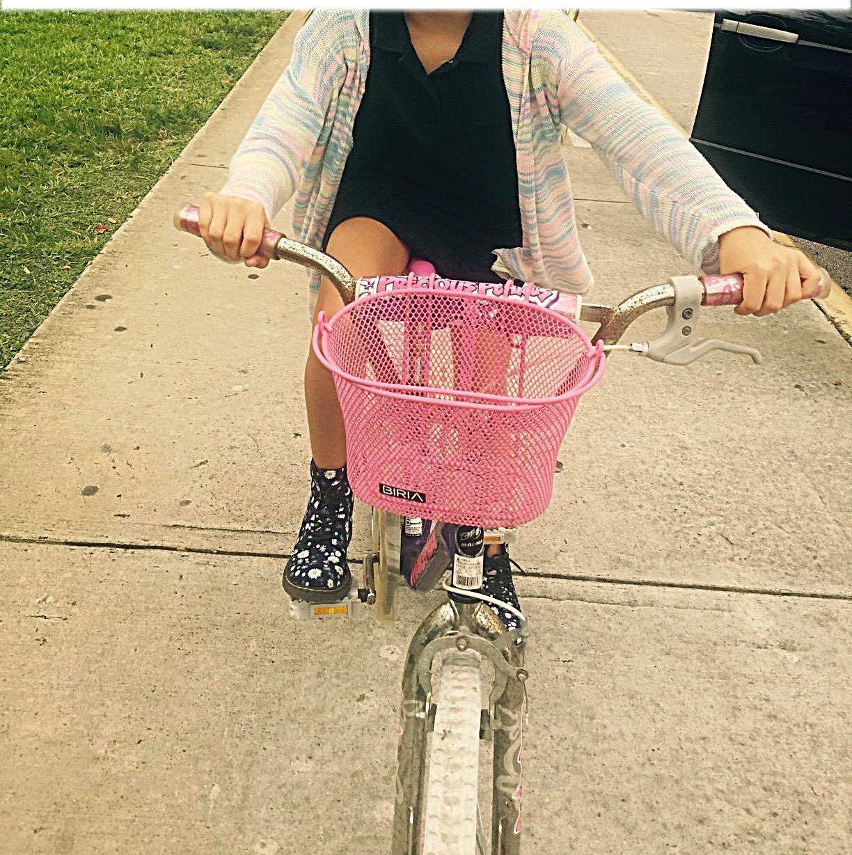 Biria Basket with hooks PINK, Front, Removable, wire mesh SMALL kids Bicycle basket, PINK by Biria (Image #3)