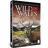 Wild Wales [DVD]