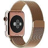 Apple Watch Bracelet, avec le Fermoir Magnétique Unique, JETech 42mm Strap Acier Inoxydable Band pour Apple Watch de Tous les Modèles Aucune Boucle nécessaires (Or)