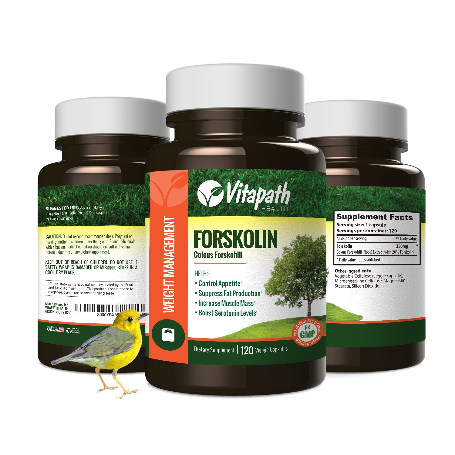 Forskolin Extract for Weight Loss, All Natural 250mg Appetite Suppressant Energy Booster, Healthy Fat Burner Formula With Forskohlli & 70% HCA -120 Veggie Caps- By Vitapath