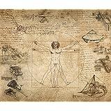 絵画風 壁紙ポスター (はがせるシール式) レオナルド・ダ・ヴィンチ コラージュ ウィトルウィウス的人体図 キャラクロ K-DVC-002S2 (594mm×498mm) 建築用壁紙+耐候性塗料