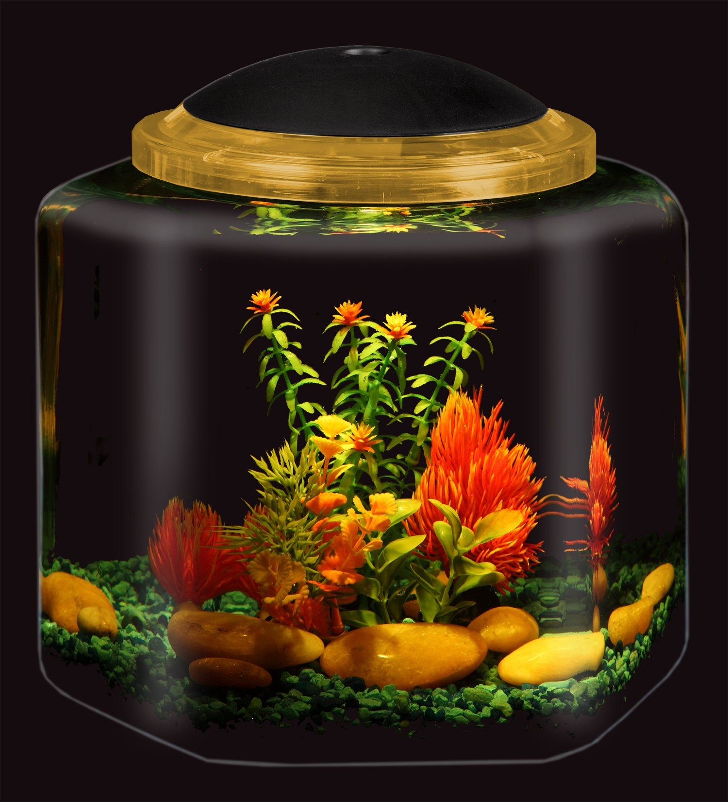 The Nifty Nook Exclusive Design New Good Luck Decorative Gold Antiqued Elephant Glass Fish Bowl Tabletop Aquarium or Terrarium or Candle Holder,New 1 Gallon Size Fish Bowl with River Rocks