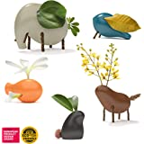 Taksa Toys Locomo Family Multicolored Edition III (Set of 5) - Wooden Animal Figures Open-Ended Educational Outdoor Play…