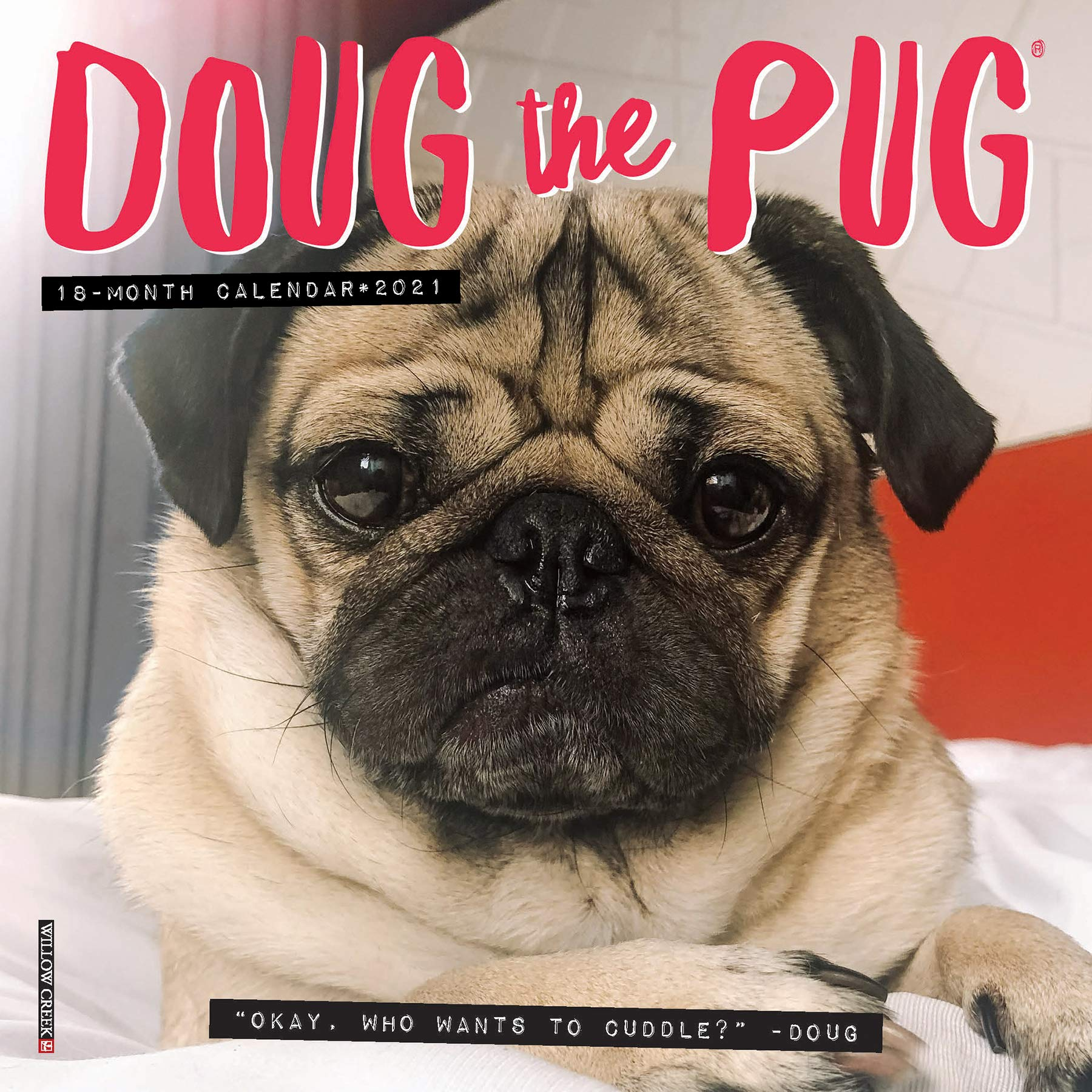 Doug The Pug 2021 Mini Wall Calendar Dog Breed Calendar Mosier Leslie 9781549214042 Books Amazon Ca