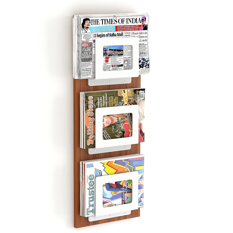 Bluewud Charlie Magazine Holder Rack Cum Newspaper Stand W