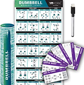 """Yoyork Workout Posters for Dumbbell Training - Laminated Home Gym Workout Poster with 10 Workout Cards for Free Weight, Body Building Exercise - 17"""" x 45"""""""