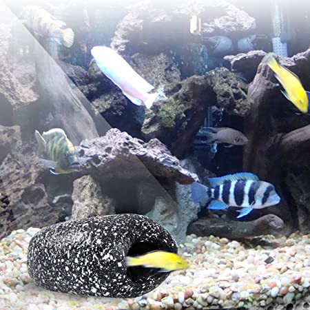 UEETEK Tanque de peces cueva Rock acuario decoraciones criadero para corta dorada, cíclidos - talla S (piedra del copo de nieve): Amazon.es: Hogar