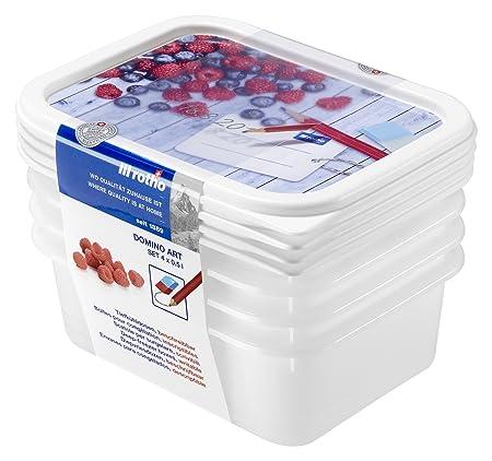Rotho recipientes para congelar-Sets Domino grabable con Tapa ...