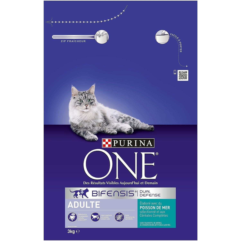 Purina ONE - Pienso para Gatos Adulto Talla & Sabor Elegir 1,5 kg - Lote de 6 (9 kg): Amazon.es: Productos para mascotas