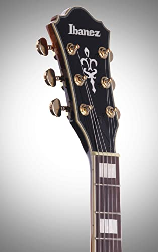 Ibanez AM93AYS Artcore Expressionist