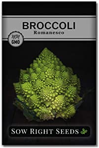 Sow Right Seeds - Romanesco Broccoli Seed for Planting - Non-GMO Heirloom Packet with Instructions to Plant a Home Vegetable Garden