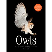 Owls - A guide to every species