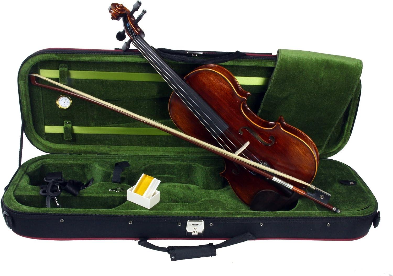 Violín de tamaño 4/4, Alexander Gotye Modelo TY-8: Amazon.es: Instrumentos musicales