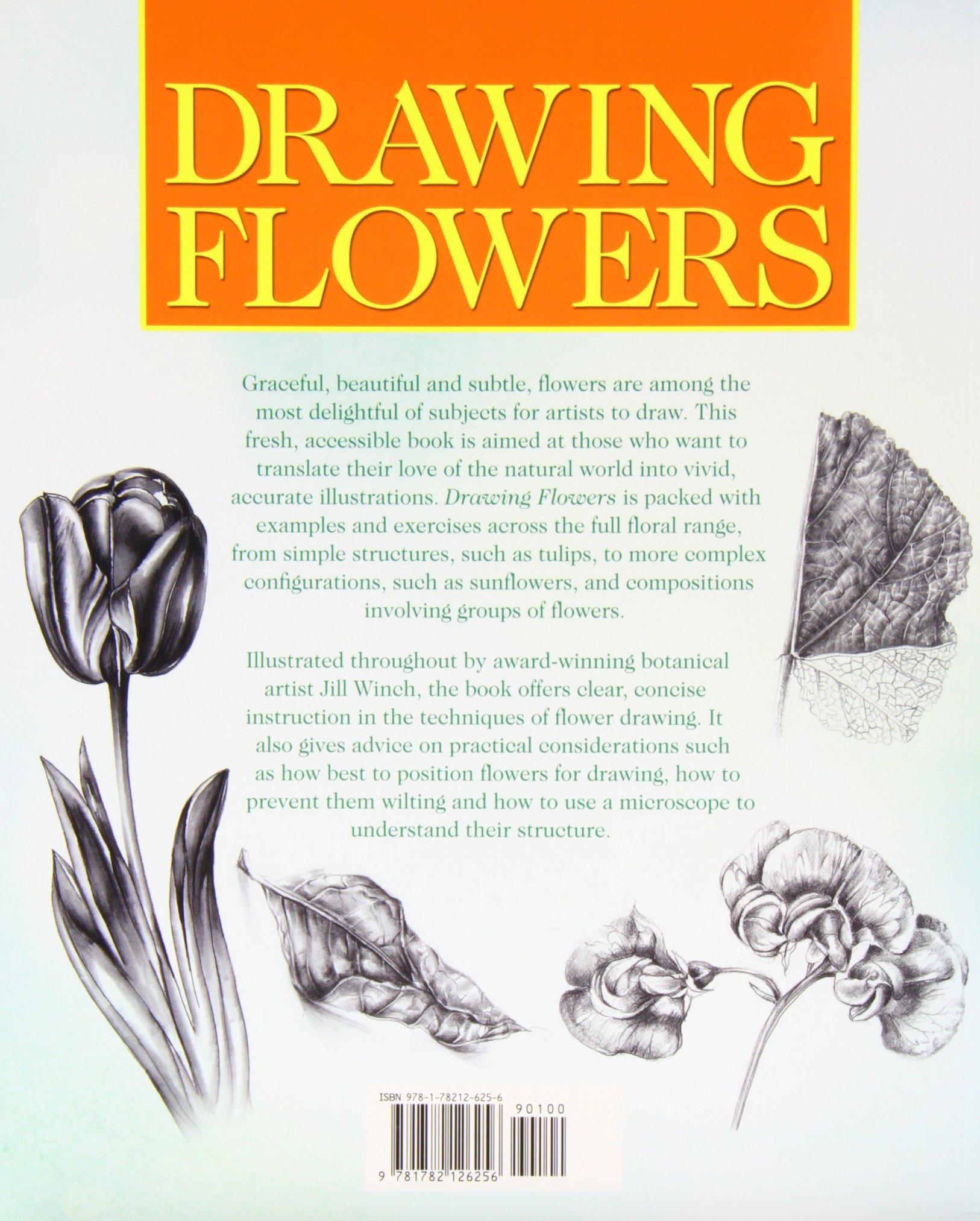 Drawing Flowers Jill Winch 9781782126256 Amazon Com Books
