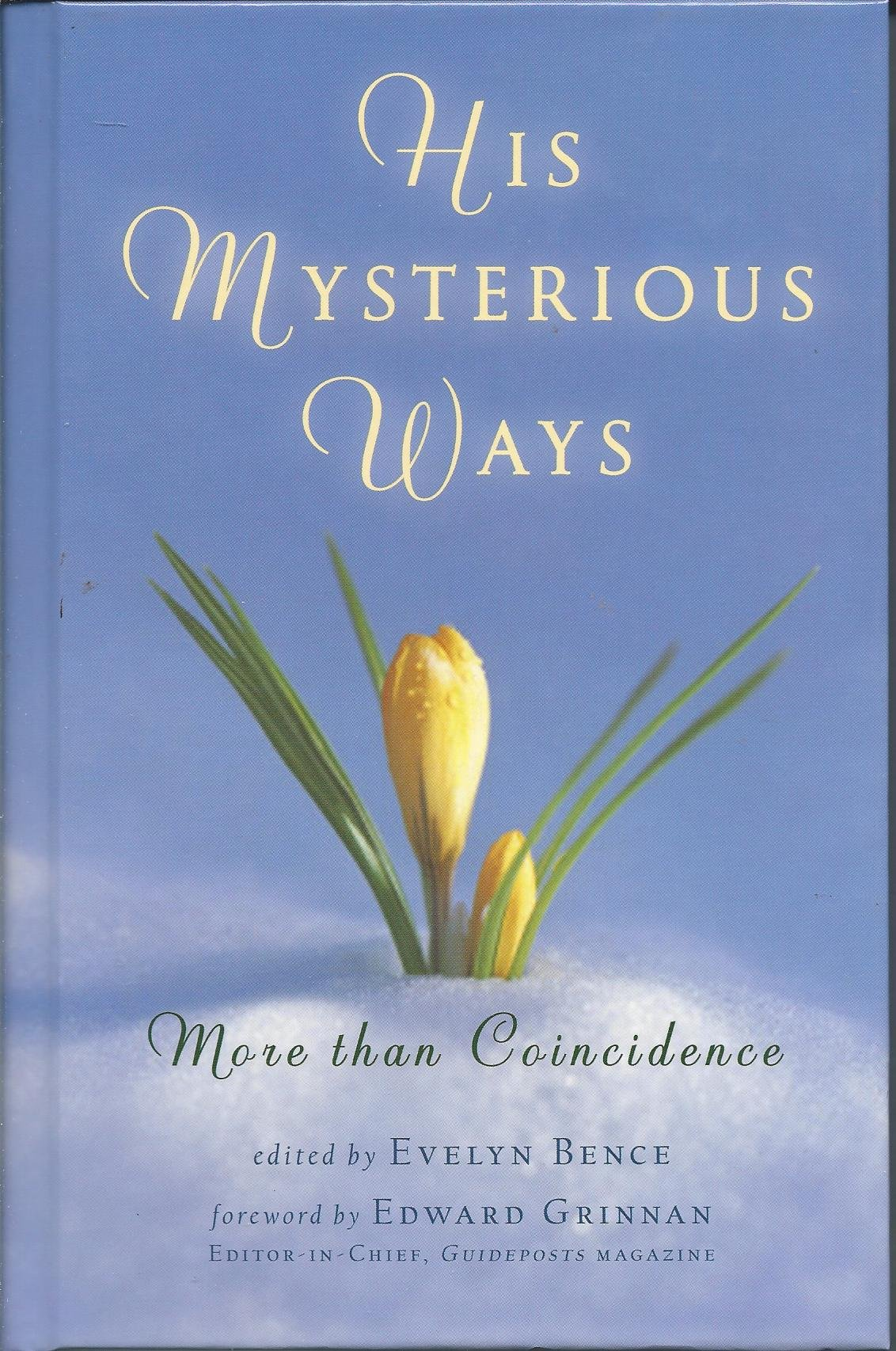 Read Online His Mysterious Ways: More Than Coincidence pdf epub