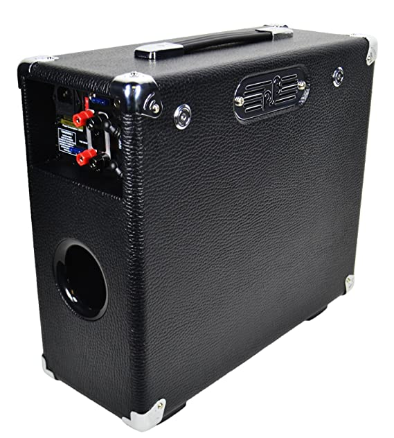 Amazon.com: Phil Jones Bass Briefcase Bass Combo Amp Black: Musical Instruments