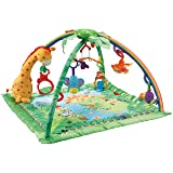 Fisher Price Melodies and Lights Deluxe Gym
