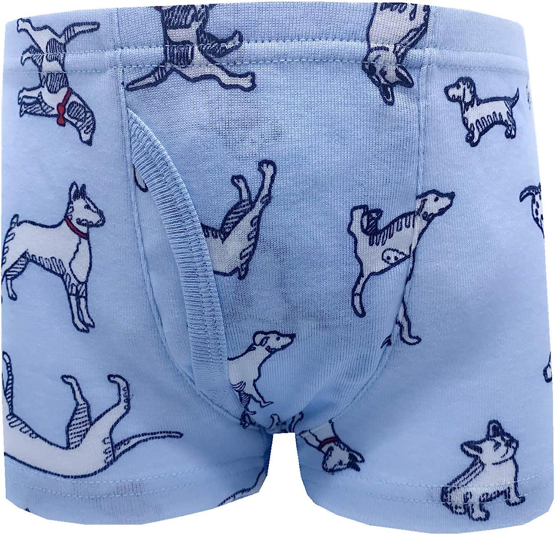 Cczmfeas Boys Toddler Dinosaur Cotton Underwear Boxer Briefs 6 Pack
