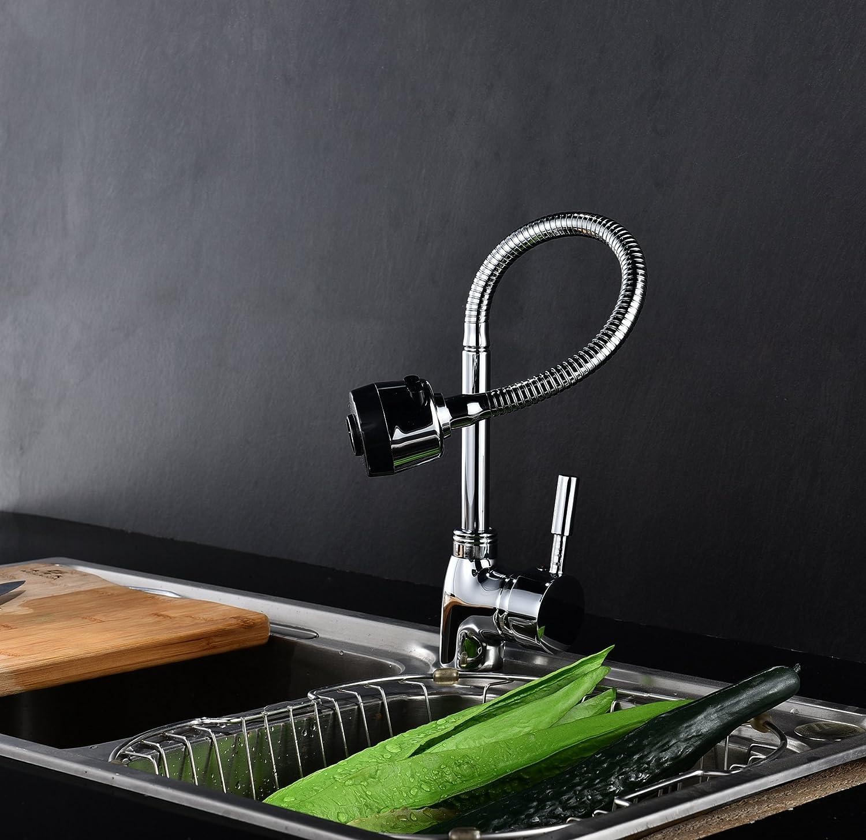 Ausgezeichnet Küchenspüle Wasserhahn Sprayer Nicht Funktionierend ...