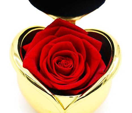 Amazon.com: Regalos de regalo para mamá, flores reales, rosa ...