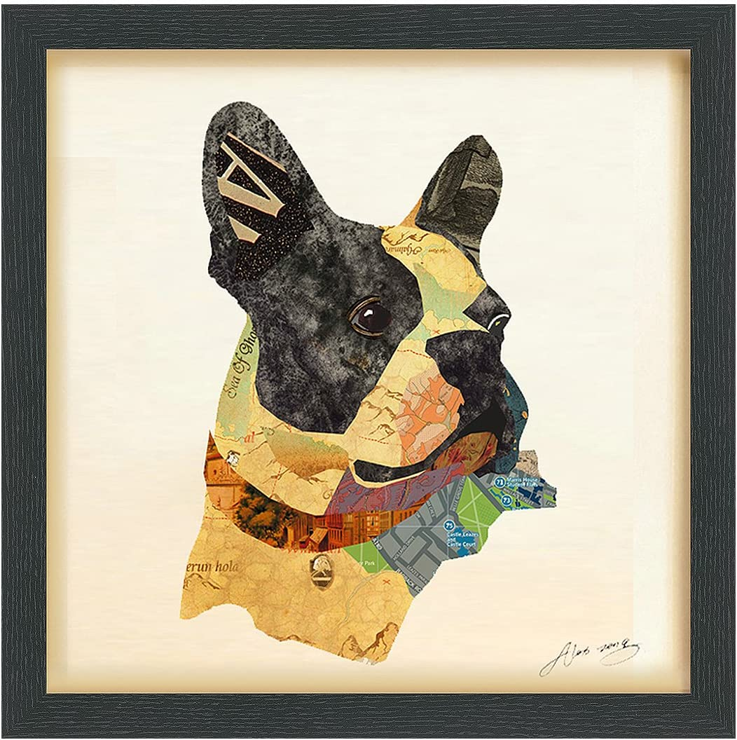 Empire Art Direct Closeup Dimensional Collage Handmade by Alex Zeng Framed Graphic Dog Wall Art, 17 x 17 x 1.4 , Ready to Hang, Boston Terrier Close-up