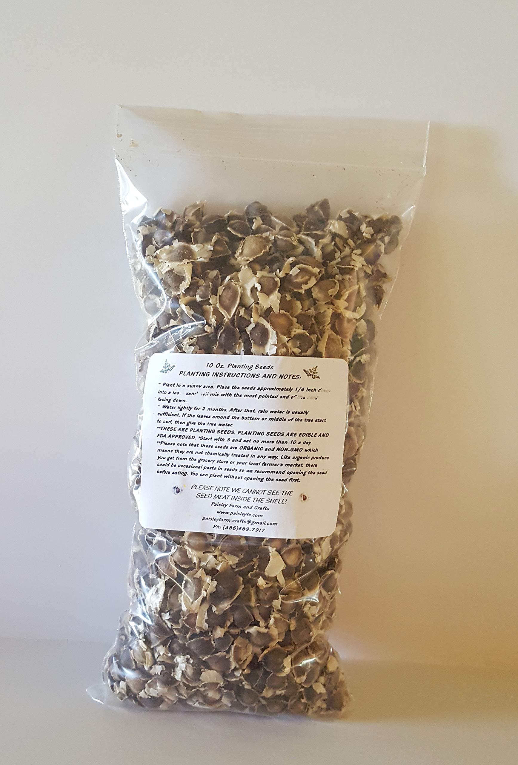 10 oz (APX 1000) Moringa Malunggay Drumstick Seeds - Paisley Farm and Crafts by Paisley Farm and Crafts (Image #2)