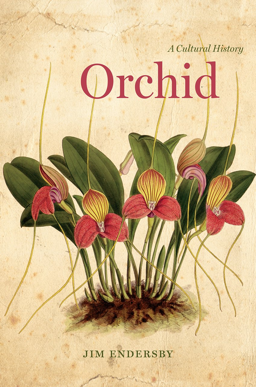 Orchid: A Cultural History: Jim Endersby: 9780226376325: Amazon.com: Books