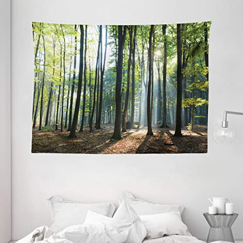 Ambesonne Forest Tapestry, Sunbeams Rays Shadows in The Morning Rising Sun Serenity Tranquil Picture Print, Wide Wall Hanging for Bedroom Living Room Dorm, 80 X 60 , Green Brown