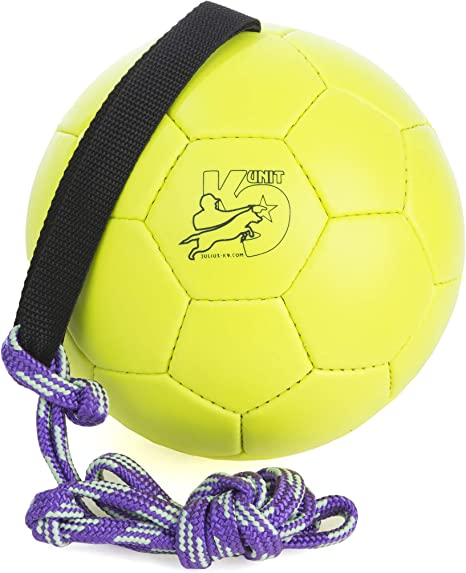 Julius-K9 KORA1 Show Training Ball 170 mm, Un tamaño: Amazon.es ...