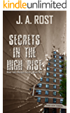 SECRETS IN THE HIGH RISE: River Falls Mystery Series, Book One