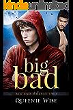 Big Bad (Big Bad Wolves Book Two)