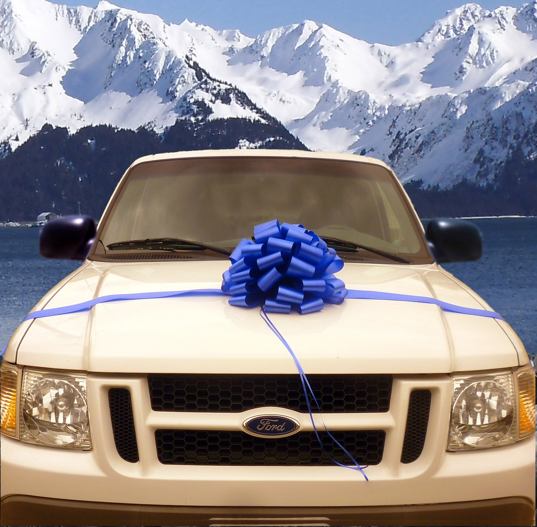"Amazon.com: Large Car Bow, 16"" Wide"