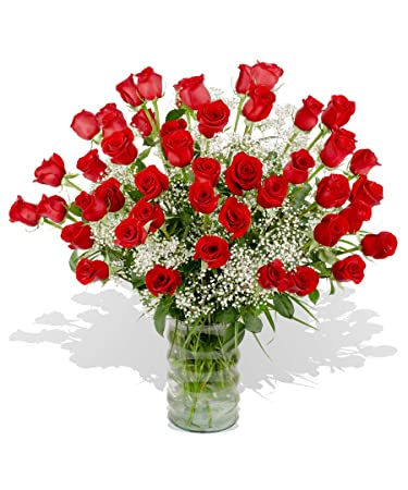 Amazoncom 48 Premium Red Roses Hand Delivered In Baton Rouge Area