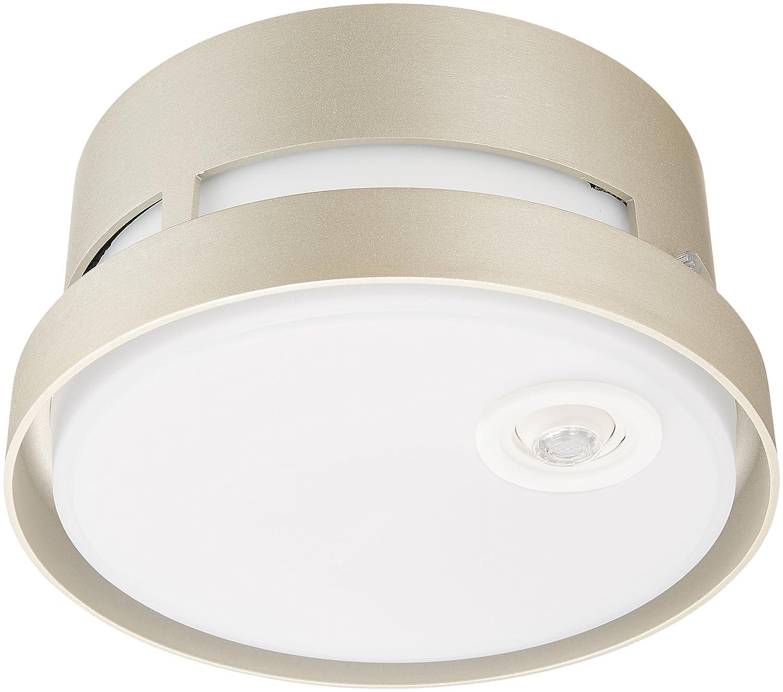 パナソニック LEDシーリングライト 40形 電球色 LGWC56020YK B01E2BKT94 プラチナメタリック