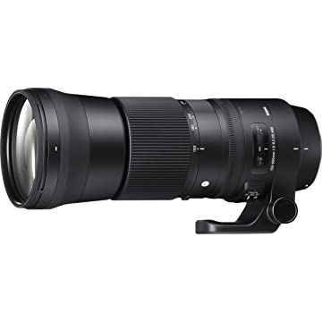 cheap Sigma 150-600mm 5-3 Contemporary DG 2020