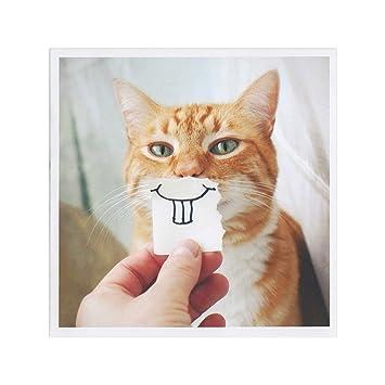 Buck Tooth Kitty Birthday Card