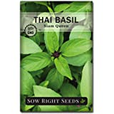 Sow Right Seeds - Sweet Large Leaf Thai Basil Seed for Planting; Non-GMO Heirloom Seeds; Instructions to Plant and Grow a Kit