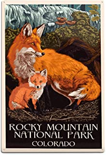 product image for Rocky Mountain National Park, Colorado - Fox and Kit - Letterpress 78921 (6x9 Aluminum Wall Sign, Wall Decor Ready to Hang)