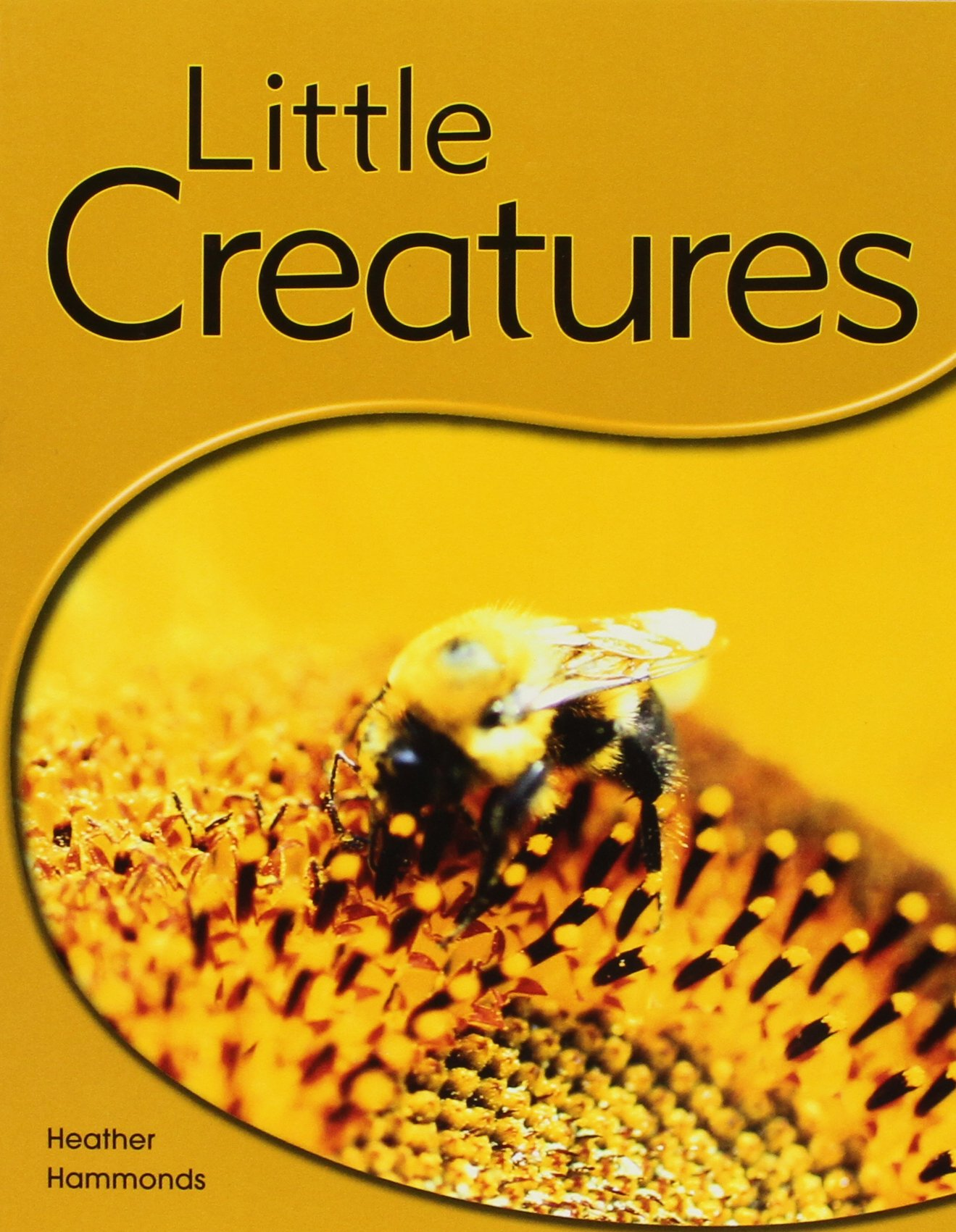 Rigby PM Shared Readers: Leveled Reader  (Levels 6-7) Little Creatures pdf
