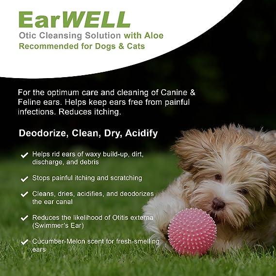 Amazon.com: Vetwell - Limpiador de orejas de gato y perro ...