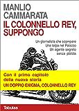 Il colonnello Rey, suppongo: Un giornalista che scompare. Una talpa nel palazzo. Un agente segreto senza pistola.