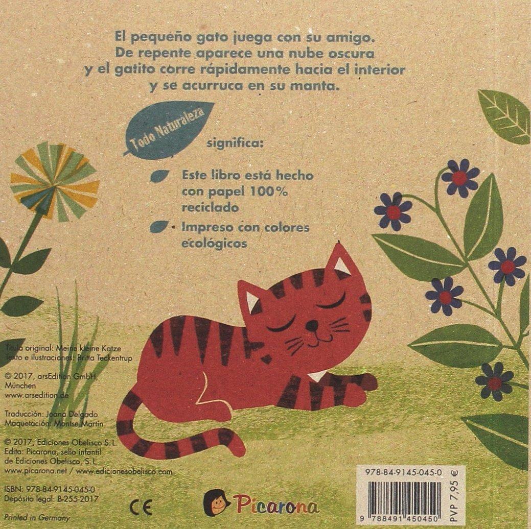 Mi gatito (Spanish Edition) (Todo Naturaleza): Britta Teckentrup: 9788491450450: Amazon.com: Books