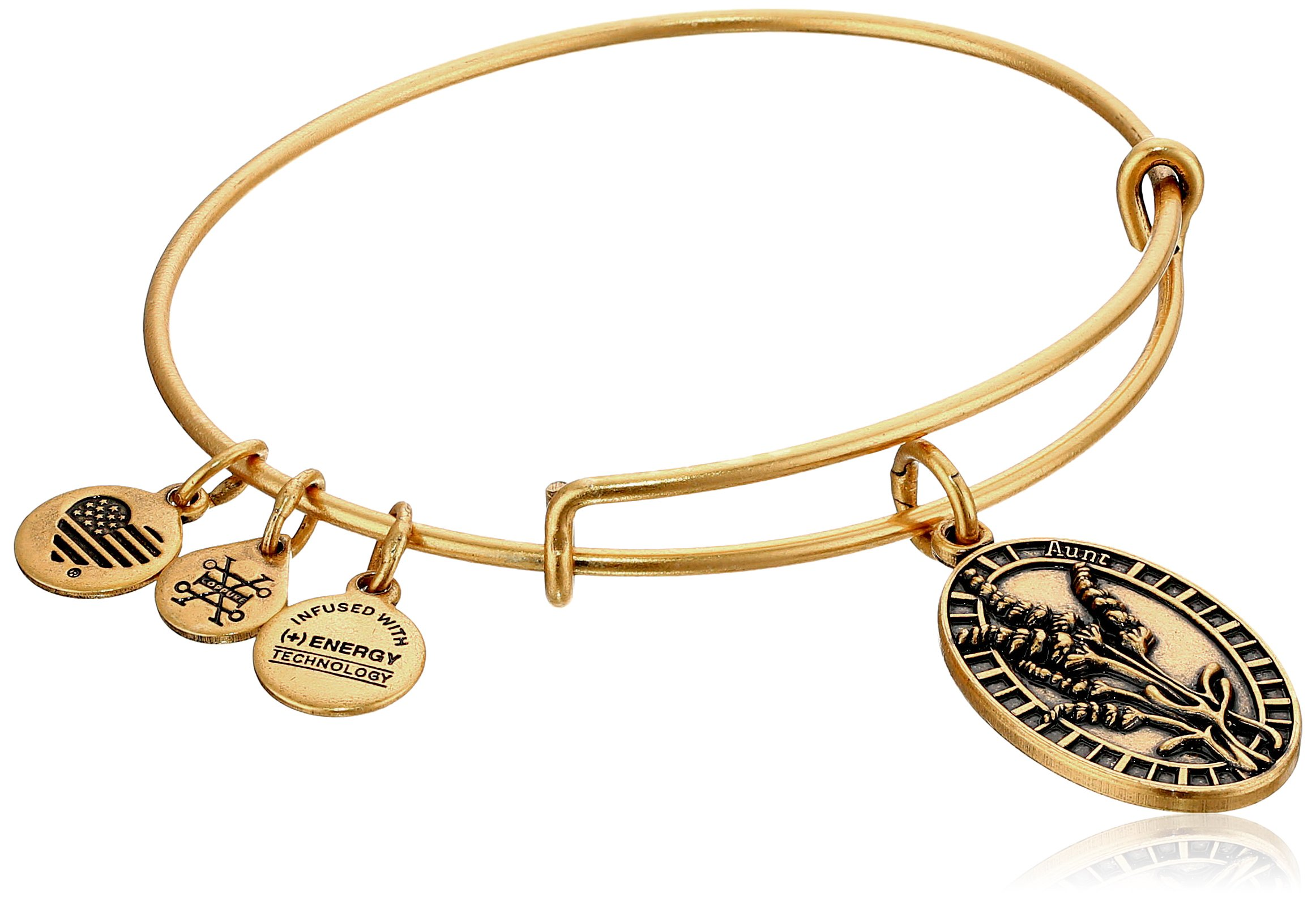 Alex and Ani Aunt Rafaelian Gold Bangle Bracelet