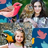 Birds Photo Collage Maker